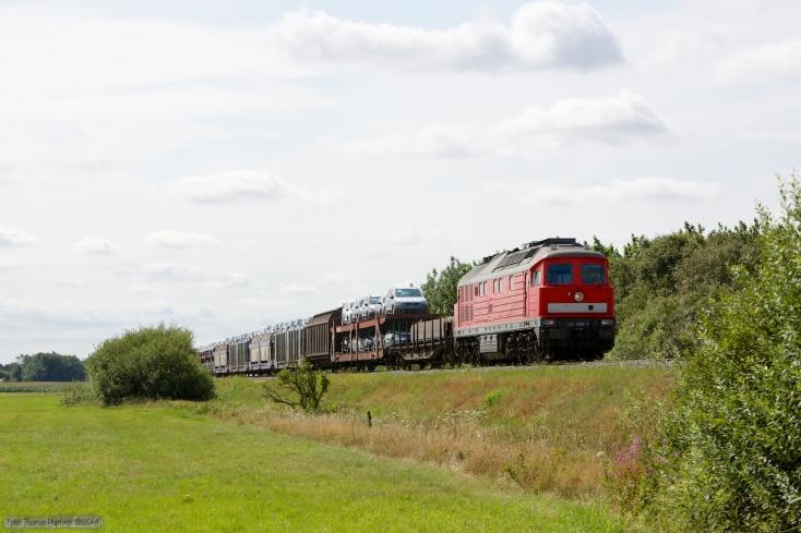 DB 232 388-9 med GD 138606 (Tdr-Es) mellem Skærbæk og Døstrup - 04.02.2014