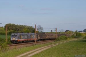 Hector Rail 241.008 og 241.003 med HG 38185 (Mgb-Pa) mellem Taulov og Lunderskov - 17.05.2014