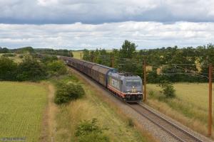 Hector Rail 241.008 med HG 38783 (Malmö Gb - Padborg) mellem Vojens og Sommersted - 15.07.2012